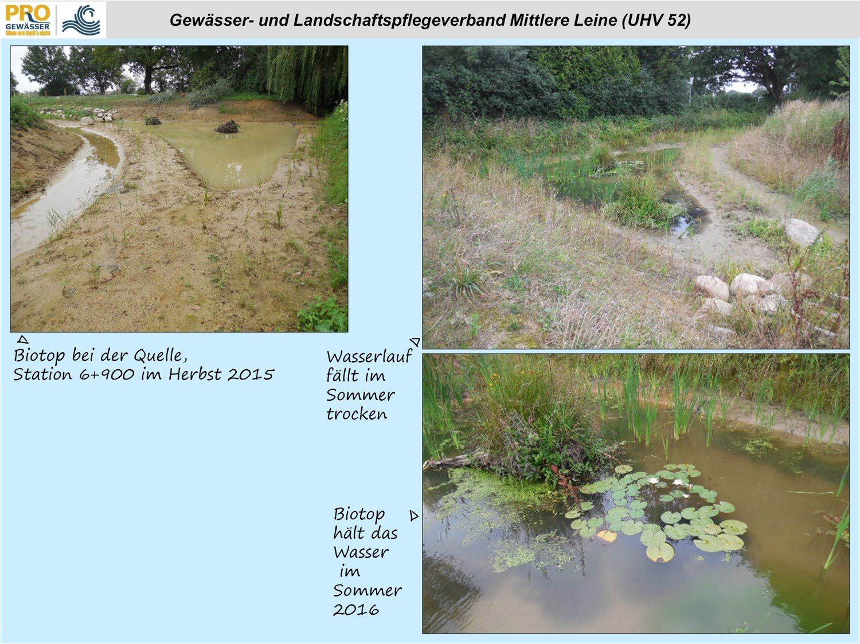 Ein Biotop am Lohnder Bach im Herbst 2015 und Sommer 2016 (Quelle: GLV)
